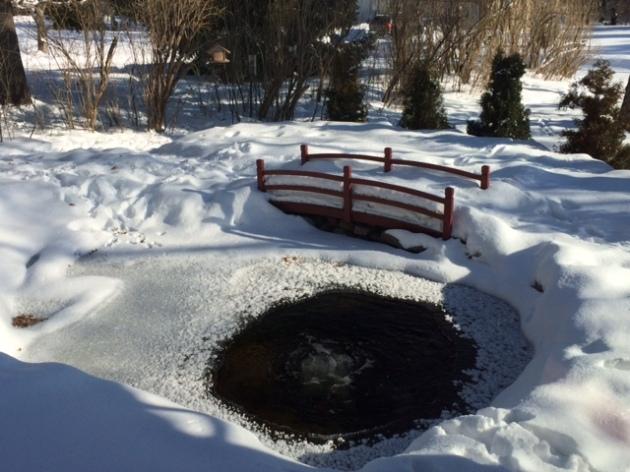 1-27-2014 sub-zero sunny morning