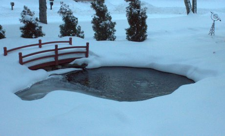 pond after snowfall