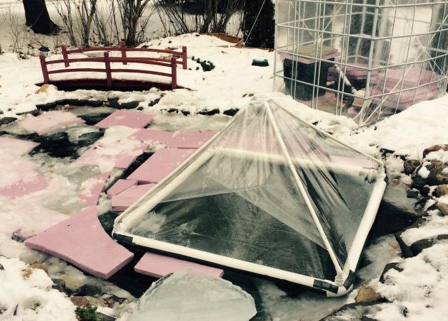 Winter Pond 1-17-2015