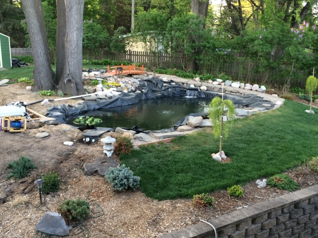 and of course we still have to tuck away the pond liner and arrange the river jacks around the pond