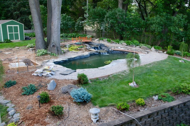 June 14 - near side of pond edging completed