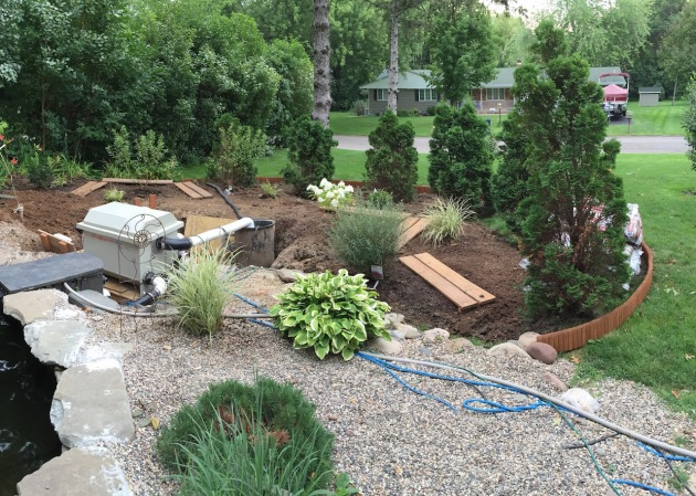 lower pond garden is moving along