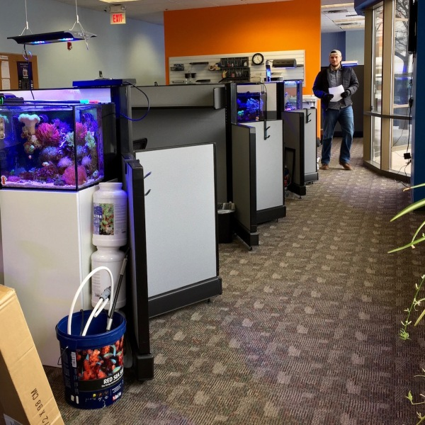 a saltwater aquarium in every cubicle - awesome
