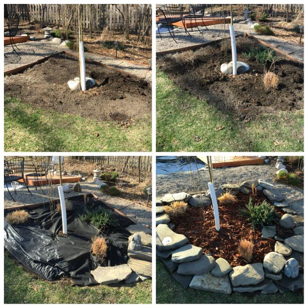 A new little corner garden.