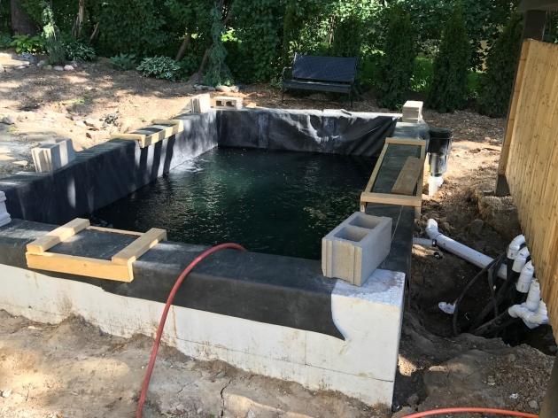 mnkoilday.com koi keeping, ki pond, lower pond, koi