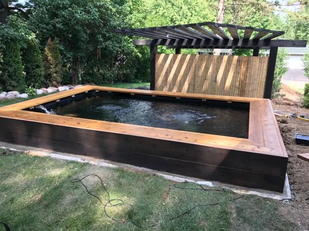 koi, koi pond, Minnesota, mnkoilady, cedar, pond building